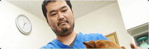 経験豊富な医師が行う不妊治療